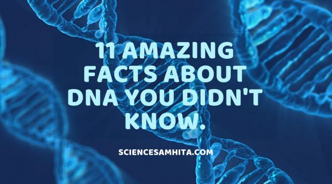 11 Amazing Facts about DNA You didn't Know.