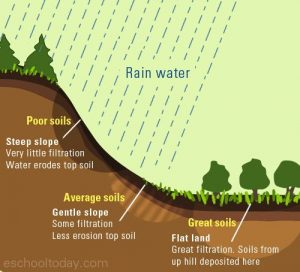 effect_of_relief_on_soils