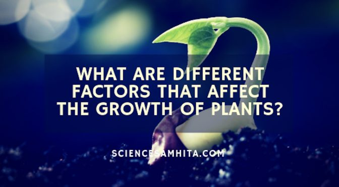 What are different factors that affect the growth of plants?